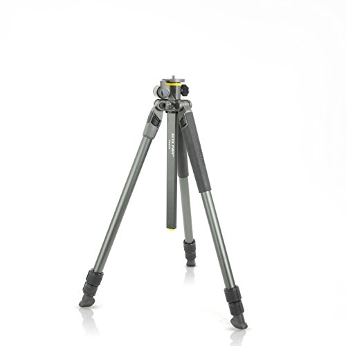 Vanguard Alta Pro 2+ 263AT Aluminum Tripod with Multi-Angle Center Column by Vanguard