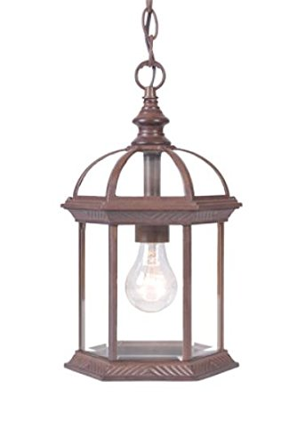 Acclaim 5276BW Dover Collection 1-Light Outdoor Light Fixture Hanging Lantern, Burled Walnut ()