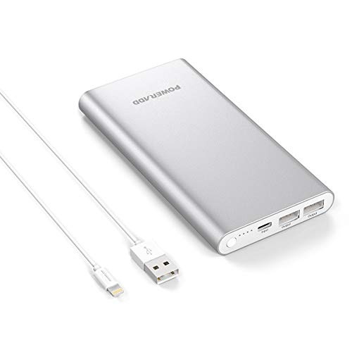 Poweradd Pilot 4GS 12000mAh Portable Power Bank External Battery Charger with 3A High-Speed Output for iPhone, iPad, iPod, Samsung and More - Silver (MFi 8-Pin Cable Include)