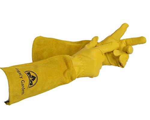 Legacy Gardens Leather Gardening Gloves for Women and Men | Thorn and Cut Proof Garden Work Gloves with Long Heavy Duty Gauntlet | Suitable for Thorny Bushes Cacti Rose Pruning - Large Yellow