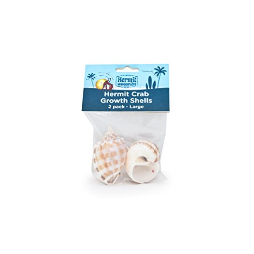 Flukers Hermit Crab Growth Shells, Large, 2-Pack ()
