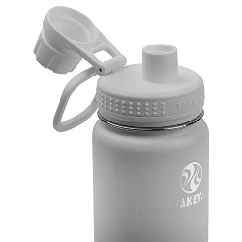 Takeya Actives Insulated Stainless Steel Water Bottle with Spout Lid, 18 oz, Pebble