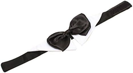 CUHAWUDBA Corbata de Lazo Ajustable para Aseo de Perro de Mascota ...