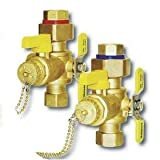Webstone 3/4 E2 EXP Tankless Water Heater Service Valves 4444 Series