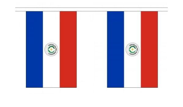 9 metros 30 (22,86 cm x 15,24 cm) paraguayo de la bandera de ...