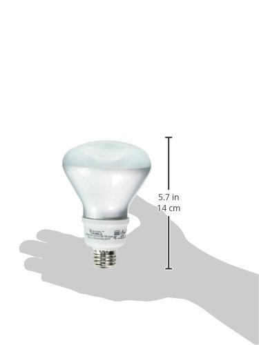 EARTHTRONICS R316SW2BIS Westpointe Compact Fluorescent Instant On Flood Light, 16W, Soft White, 2-Pack