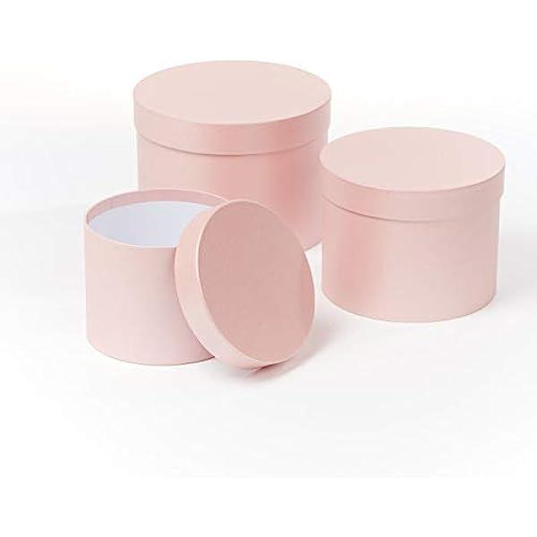 OASIS Symphony - Juego de 3 cajas para sombreros de floristería, color rosa claro: Amazon.es: Bricolaje y herramientas