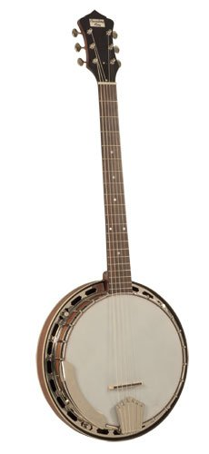 Recording King RK-G25E-BR Madison 6-String Banjo with Pickup