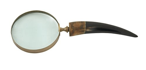 Deco 79 Crucial Brass Horn Magnifying Glass