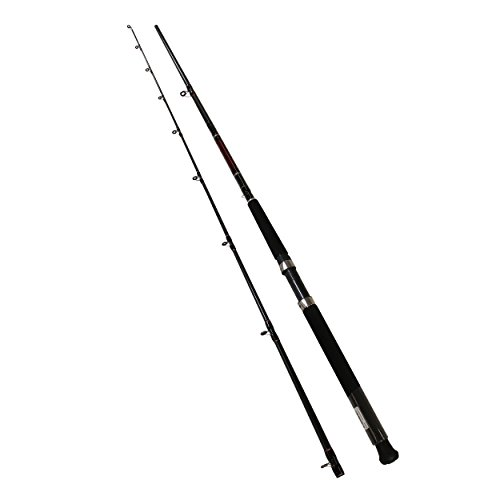 Daiwa Wilderness Downrigger Trolling Freshwater Rod, 8' Length, 1Piece, 12-30 lb Line Rate, Medium/Heavy Power