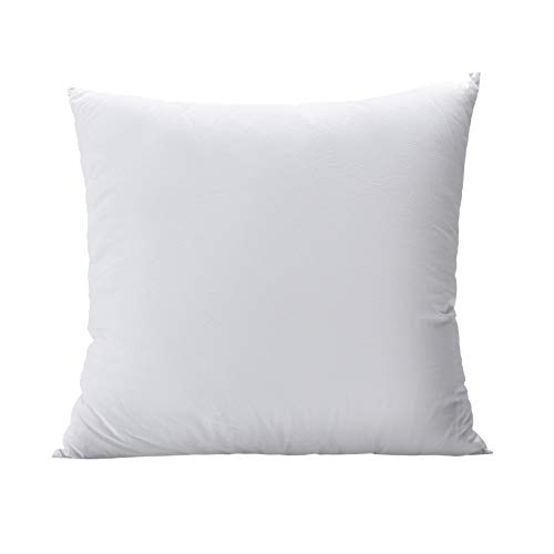 Most Popular Pillow Inserts