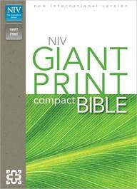 Price comparison product image holy-bible--new-international-version-burgundy-leather-look-giant-print
