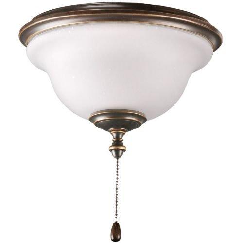 Progress Lighting P2636-20 2-Light Indoor/Outdoor Fan Light Kit with Frosted Seeded Glass, Antique Bronze - Progress Lighting Fan Kit