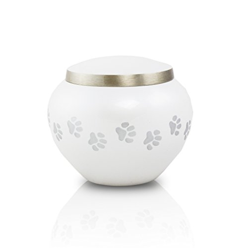 engraving for pet urn buyer's guide for 2019