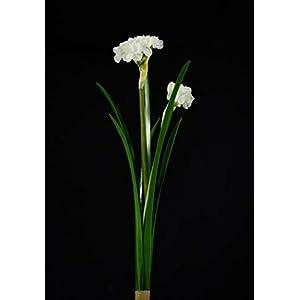 BIG-DEAL BD_6pcs 40cm Emulation Artificial Narcissus High Grade Indoor Home Decoration Fake Flower Silk Flower Ceremony Ornament - ( Color:White ) 64