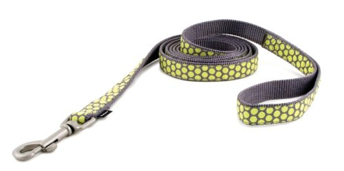 Fido Fleece Fleece Collar - PetSafe Fido Finery Dog Leash, 1-Inch by 6-Foot, Fleur De Flea