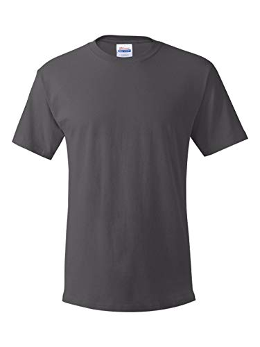 - Hanes Mens TAGLESS ComfortSoftCrewneck T-Shirt,Smoke Gray,XLarge