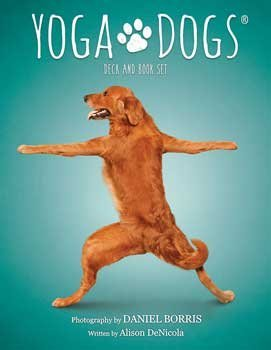 AzureGreen Yoga Dogs Tarot Cards by Borris & DeNicola