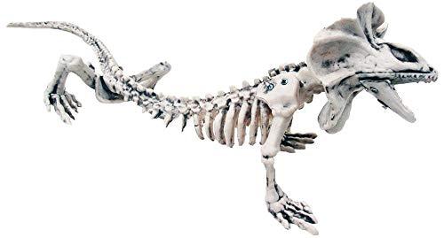 16in. Skeleton Lizard Halloween Decoration