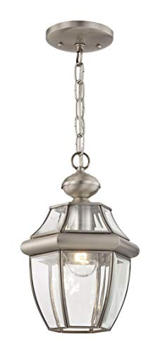 1 Fixture Pendant - Livex Lighting 2152-91 Monterey 1-Light Outdoor Hanging Lantern, Brushed Nickel