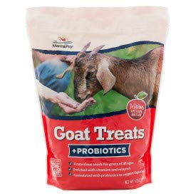 Manna Pro Goat Treat Apple Flavored Multi Pack of Two 5lb Each