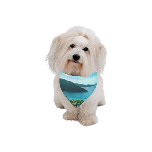 AIKENING Pet Dog Cat Bandana British City Free Travel Romantic Color Fashion Printing Bibs Triangle Head Scarfs Kerchief Accessories for Large Dog Pet Birthday Party Easter - British Virgin Tortola Bay