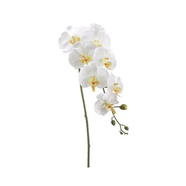 40″ Silk Phalaenopsis Orchid Flower Spray -Cream/Yellow (case of 12)