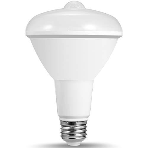 LOHAS BR30 LED Bulb with Motion Sensor Light 12W, 100W Light Bulb Equivalent, Security Light Outdoor Floodlight, Daylight 5000K E26 Medium Base, Motion Activated LED Bulbs for Garage Porch(1 Pack)