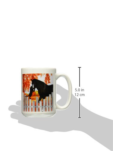 15-Ounce 3dRose mug/_150196/_2 Precious Black Cat and Black Horse Sharing a Moment of Friendship Behind a Picket Fence in Autumn Ceramic Mug