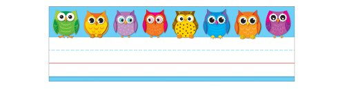 (Carson Dellosa Colorful Owls Nameplates (122029))