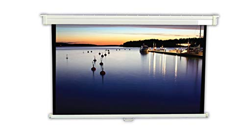 (Vutec EVMW4864D 48-Inch x 64-Inch 4:3 Format EconoPro DLX Manual Pull-Down Screens)