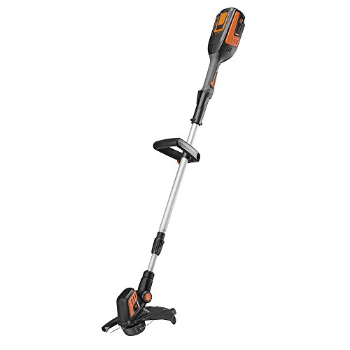 Remington RM4000 40V 12-Inch Cordless Battery String Trimmer and Edger