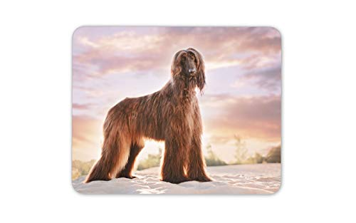 Beautiful Afghan Hound Mouse Mat Pad - Dog Puppy Mum Auntie Computer Gift #16262 ()