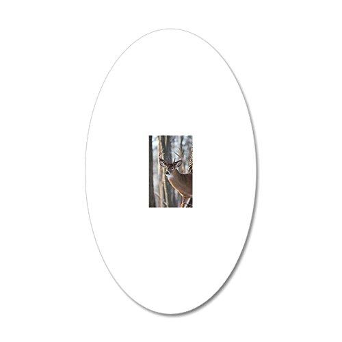 CafePress - Buck Deer D1316-053 - 20x12 Oval Wall Decal, Vinyl Wall Peel, Reusable Wall Cling ()