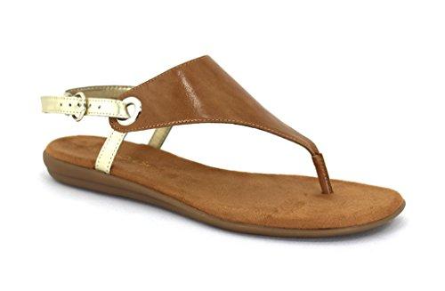 aerosoles-womens-conchlusion-gladiator-sandal-tan-combo-11-m-us