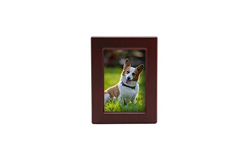 (Near & Dear Pet Memorials MDF Pet Photo Cremation Urn, 40 Cubic Inch, Cherry Finish)