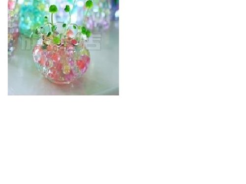 (JellyBeadZ Brand Water Beads - Science is Fun. Watch Seeds Grow.... Without Soil - 12 Gram Packet -  Muti Colors )