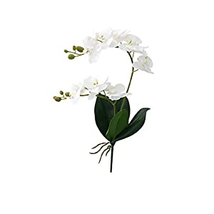 epjies artificial-flowers Latex 2 Branch Orchid Flowers with Leaves Wedding Decoration,D 79