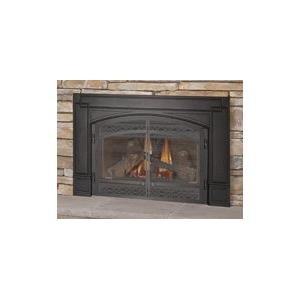 Amazon Com Gdi Napoleon Direct Vent Gas Fireplace Insert
