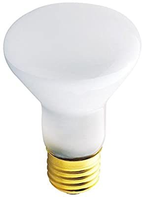45 Watt R20 Incandescent Flood Light Bulb 2700K E26 Base (6-Pack)