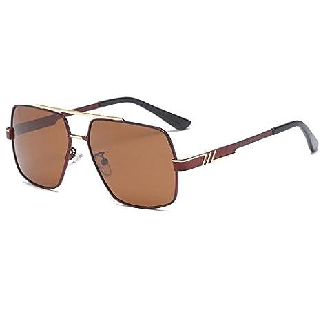 Axiba Gafas de Sol polarizadas de Rana Hombres Dos Colores de la galjanoplastia Gafas de Sol