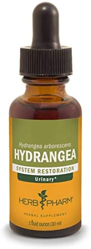 Herb Pharm Hydrangea Liquid Extract for Urinary System Support – 1 Ounce