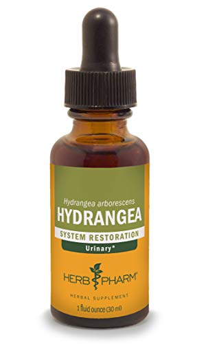 Cheap Herb Pharm Hydrangea Liquid Extract for Urinary System Support – 1 Ounce
