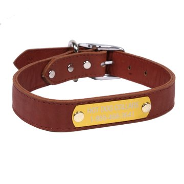 Hot Dog Collars Personalized Leather Dog Collar with Engraved Nameplate, Dark Brown Leather, X-Large