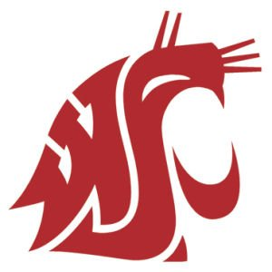 Washington State Cougars Official NCAA 4.5 inch x 6 inch Car Window Cling Decal by Wincraft