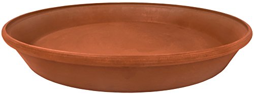 Arcadia PSW AP30TC Single Saucer, 12-Inch, Terra Cotta Color (Terracotta Saucer)