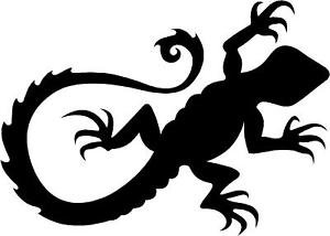 Tribal Gecko Lizard Vinyl Decal Sticker | Cars Trucks Vans Walls Laptops Cups | Black | 5.5 inches | KCD1491