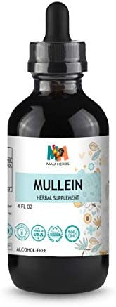 Mullein Tincture 4 FL OZ Alcohol-Free Liquid Extract