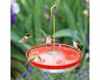 Aspects ASPECTS441 HighView Excel Bird Feeder ()
