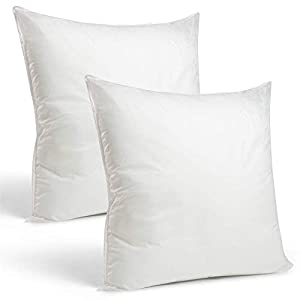 Rohi Set of 2 45cm x 45cm Hypoallergenic Cushion